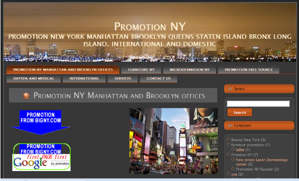 Business Promotion NY com